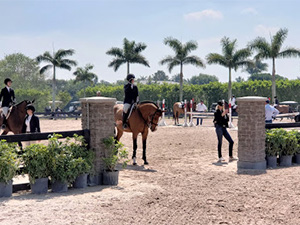 Palm Beach Equestrian Center - Wellington